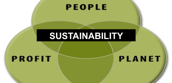 The Sustainability Challenge In Business and How to Get Buy In